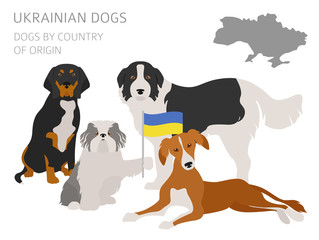 Dogs by country of origin. Ukrainian dog breeds. Infographic template