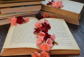 a few different books, and open an interesting book in the colors of geranium
