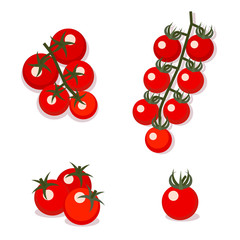 Cherry tomatoes, vector illustration. Flat style.