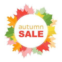 Autumn sale banner with autumn leafs