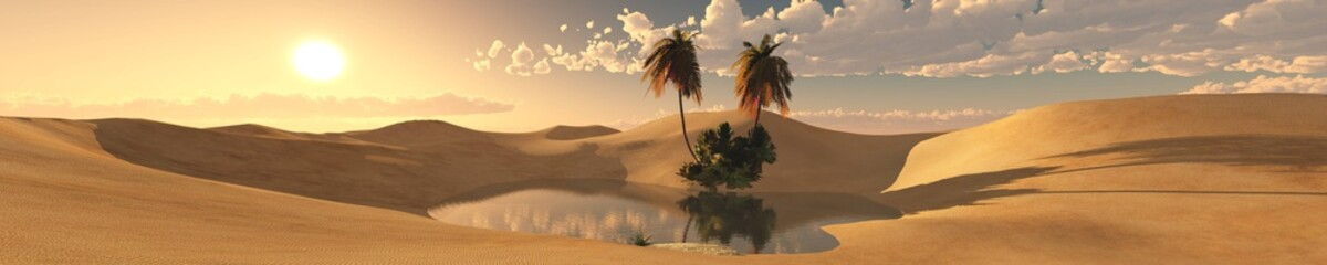 oasis in the desert of sand, panorama of the desert