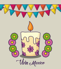Viva mexico design with decorative pennants and candle over white background, colorful design. vector illustration