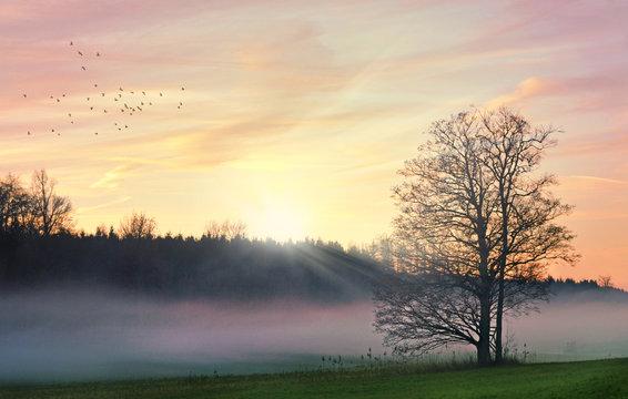 Malerischer Sonnenaufgang