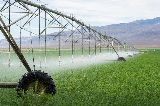 soil irrigation agriculture california