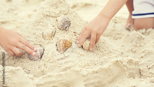 Little Kids Hands Lays Out Collection Sea Shell On The Beach Sand