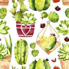 Watercolor cactus seamless pattern. Pattern with cactus, succulents, cactus in pot and succulent in florarium.  Perfect for you postcard design, invitations, projects, wedding card, poster, packaging.