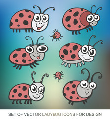 Set of vector icons ladybug. flat illustration for your design