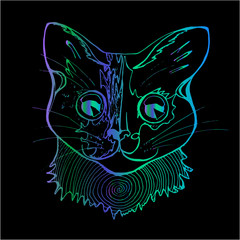 An illustration of a psychodelic cat. Colorful drawing of a cat.