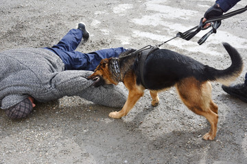 Dogged police officer catches offender