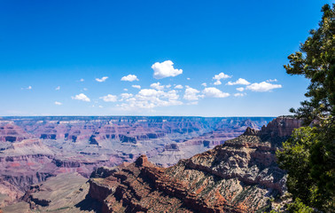 Nature of Grand Canyon National Park, Arizona, USA