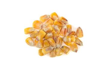 corn seeds on white background