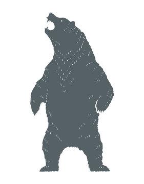Roaring Bear Silhouette