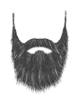 Long Gray Beard