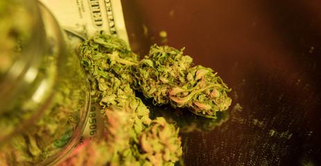 Cannabis Flowers for Impatient Gardeners, Types Of Marijuana - Sativa, Indica and Ruderalis