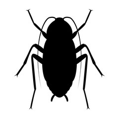 Vector image of silhouette of cockroach