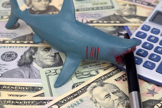 Dollar Loan Shark