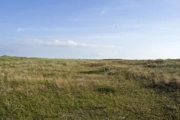 Laesoe / Denmark: View over the European bird sanctuary in the dunes at Bloeden Hale