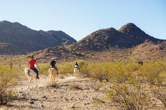 Horseback Riding Through Arizona Desert