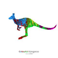 Paint Splatter Animals - Kangaroo