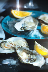 Fresh oysters closeup on blue plate, served table with oysters, lemon in restaurant. Gourmet food