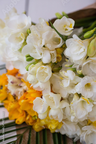 White Freesia Flower Stock Photo And Royalty Free Images On Fotolia