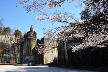 桜と大谷観音像