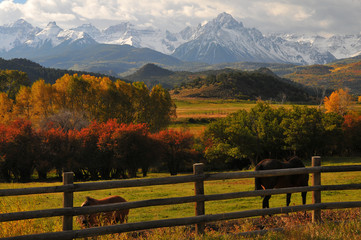 Wall Murals Black Mt Sneffels Colorado