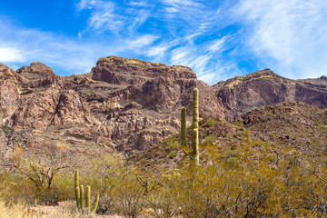Rugged landscape of the Ajo Mountains in Organ Pipe Cactus National Monument in southern Arizona, as seen from Ajo Mountain Drive