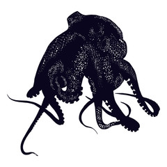 Black octopus. Isolated object.