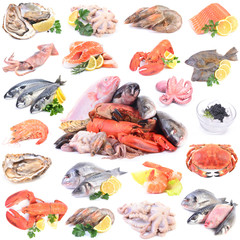 A collection of seafood for every taste