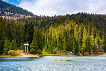 Synevyr lake among the forest in beautiful light. gorgeous springtime scenery in Carpathian mountains. popular tourist destination in Carpathian mountains