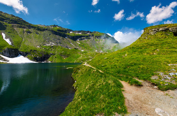 shore of a glacier among the grassy slopes. beautiful mountainous scenery in summertime