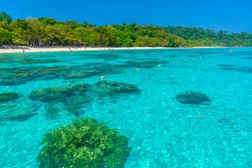 Rok island,beautiful nature island in Thailand Krabi