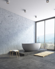Modern bathroom corner, gray tub