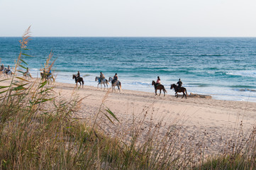 People horseback riding on shore by intense blue sea in Zahora beach, South Spain. Tourism attraction, outdoor activity concept