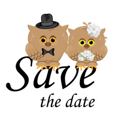 save the date wedding invitation card template.Vector illustration, white background, isolated. Cute owls groom in hat and bow tie, bride with flower bouquet