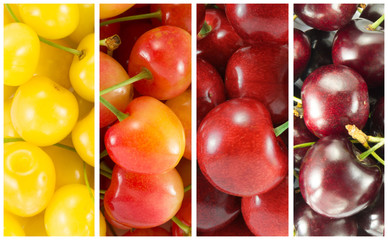Collage from different varieties of sweet cherry - rectangle