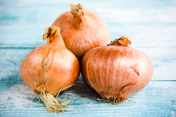 .Three onions on a blue wooden background