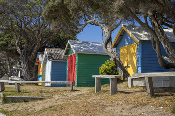 Beach huts in the summer