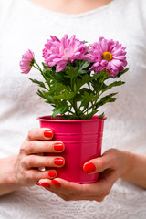 Photo of woman holding pot with pink flower