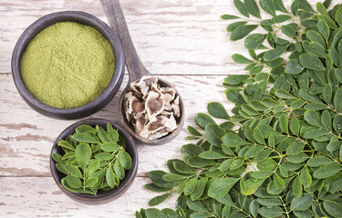 Moringa nutritional plant - Moringa oleifera