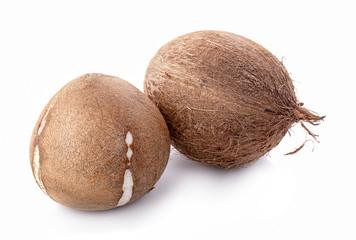 coconuts isolated on white background with clipping path