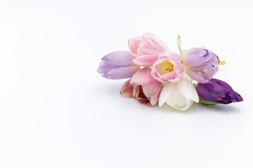 Bouquet with seven pastel colored tulips on white background
