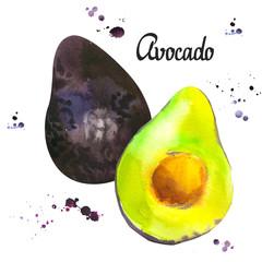 Watercolor green fresh avocado. Provencal style. Recent  paintings of organic food. Veggie menu