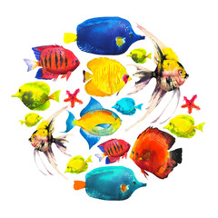 Round composition with tropical fish. Watercolor illustration with hand drawn aquarium exotic fish on white background.