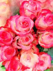 Beautiful Pink Roses in Watercolor