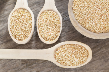 Organic amaranth seeds in wooden spoon - Amaranthus