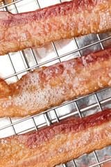Macro close up on fried bacon strips with grease foam