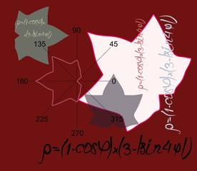 Mathematical modeling of a maple leaf using geometric formulas. Scientific vector illustration