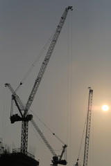 Large construction cranes are building high-rise buildings in the evening.